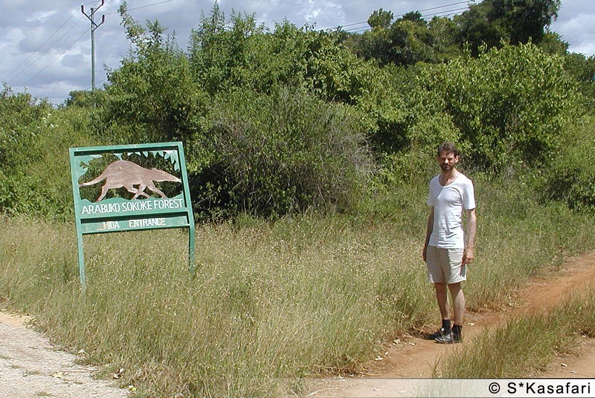 På väg in i Arabuko Sokokeskogen